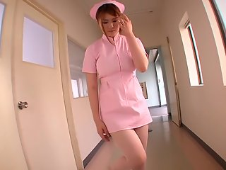 nishina momoka nishina pet nurse